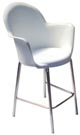 Cadeira Gogo base raio epóxi cinza verde                         água