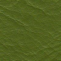 Cadeiras couro natural verde pistache Supreme