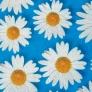 07 - Corino floral margarida azul -Cadeiras cromadas para cozinha Sidamo