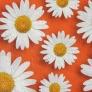 06 - Corino floral margarida vermelha -Cadeiras cromadas para cozinha Sidamo